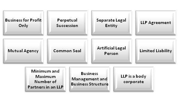 FEATURES OF LIMITED LIABILITY PARTNERSHIP